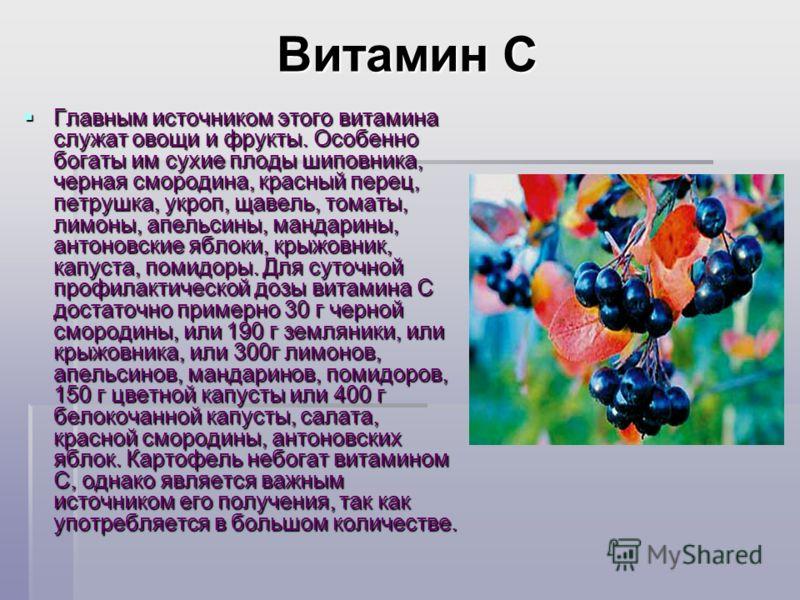 Витамин С Витамин С Главным источником этого витамина служат овощи и фрукты. Особенно богаты им сухие плоды шиповника, черная смородина, красный перец, петрушка, укроп, щавель, томаты, лимоны, апельсины, мандарины, антоновские яблоки, крыжовник, капу