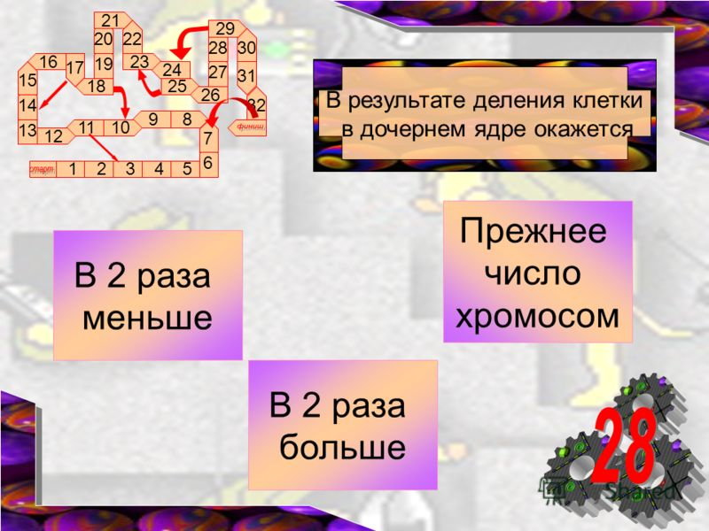 89 1011 12 16 17 18 13 12345 14 15 6 7 19 20 21 22 23 24 25 26 27 28 29 30 31 32 В результате деления клетки в дочернем ядре окажется Прежнее число хромосом В 2 раза меньше В 2 раза больше