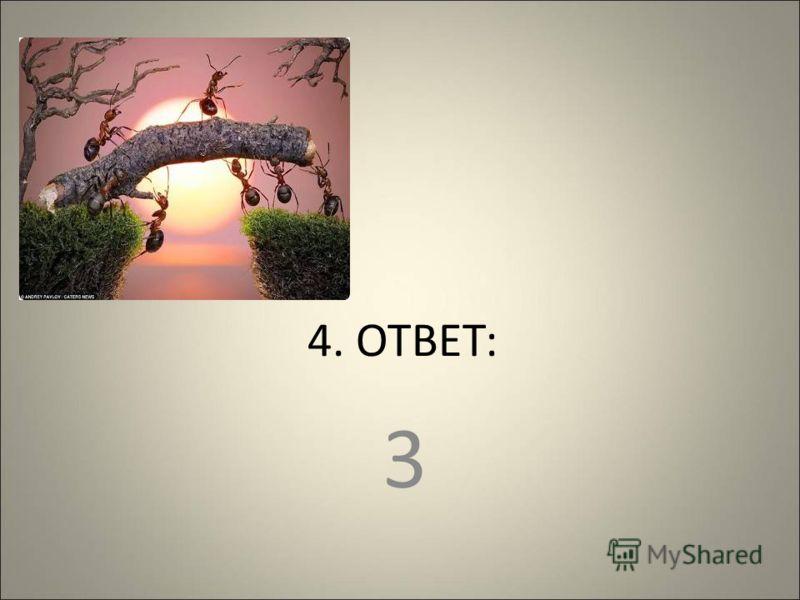 4. ОТВЕТ: 3