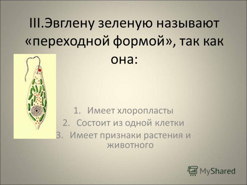 III.Эвглену зеленую называют «переходной формой», так как она: 1.Имеет хлоропласты 2.Состоит из одной клетки 3.Имеет признаки растения и животного