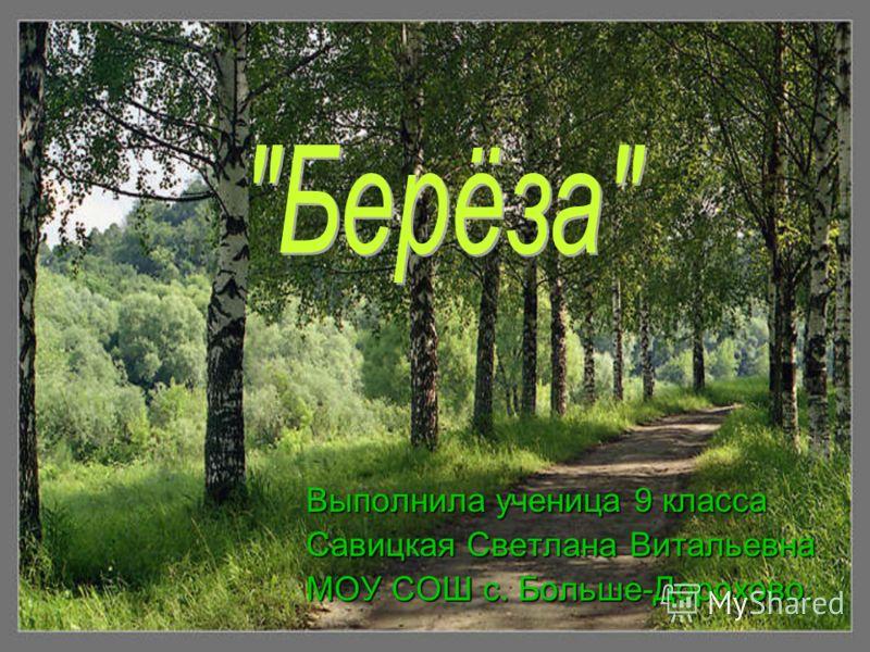 Выполнила ученица 9 класса Савицкая Светлана Витальевна МОУ СОШ с. Больше-Дорохово.