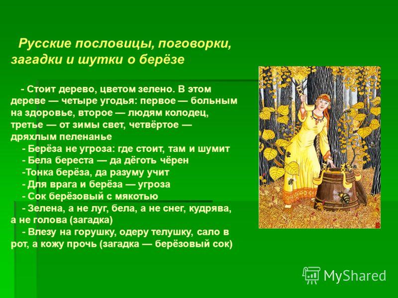Русские пословицы, поговорки, загадки и шутки о берёзе - Стоит дерево, цветом зелено. В этом дереве четыре угодья: первое больным на здоровье, второе людям колодец, третье от зимы свет, четвёртое дряхлым пеленанье - Берёза не угроза: где стоит, там и