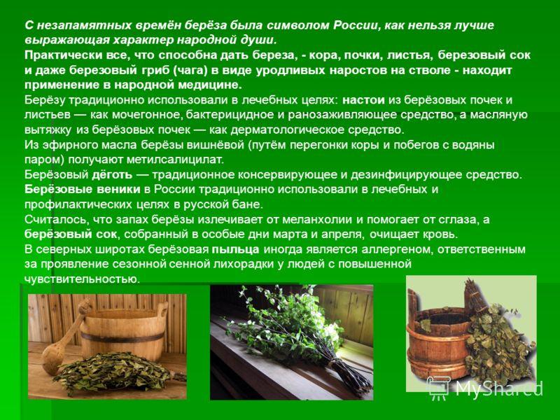 С незапамятных времён берёза была символом России, как нельзя лучше выражающая характер народной души. Практически все, что способна дать береза, - кора, почки, листья, березовый сок и даже березовый гриб (чага) в виде уродливых наростов на стволе -