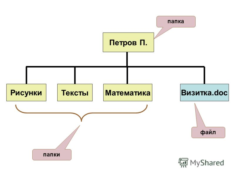 Петров П. РисункиТекстыМатематикаВизитка.doc папка папки файл
