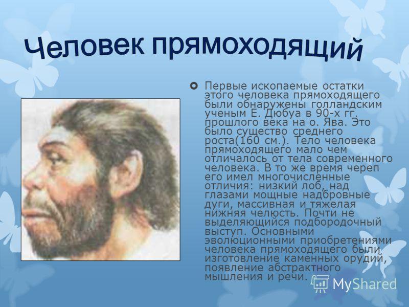 Первые ископаемые остатки этого человека прямоходящего были обнаружены голландским ученым Е. Дюбуа в 90-х гг. прошлого века на о. Ява. Это было существо среднего роста(160 см.). Тело человека прямоходящего мало чем отличалось от тела современного чел