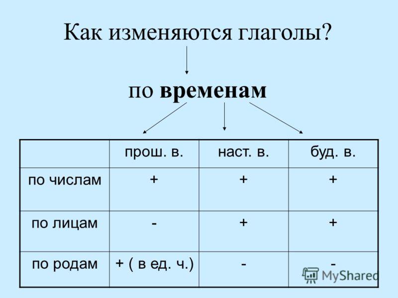 Как изменяются глаголы? по временам прош. в.наст. в.буд. в. по числам+++ по лицам-++ по родам+ ( в ед. ч.)--