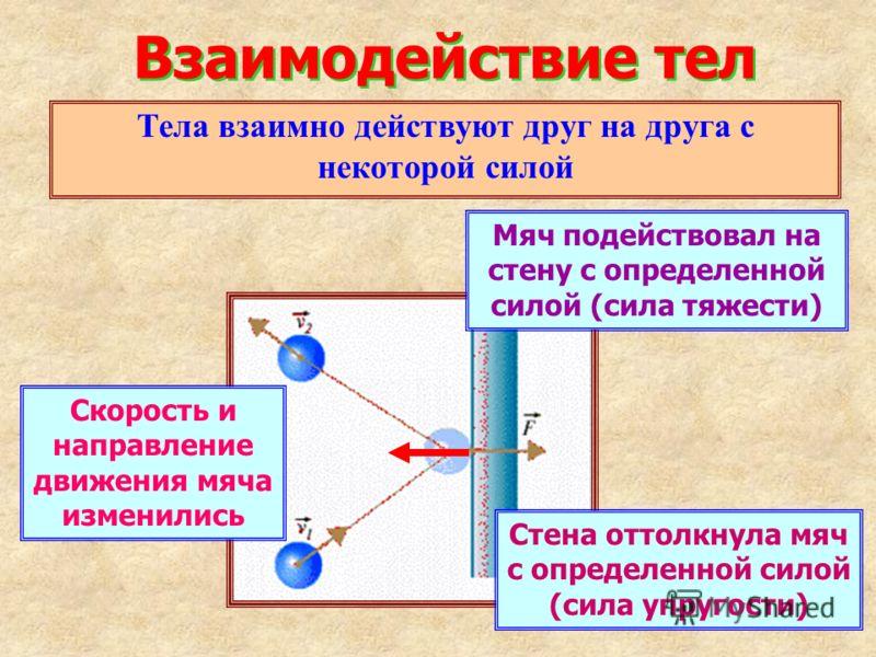 Взаимодействие тел Тела взаимно действуют друг на друга с некоторой силой Скорость и направление движения мяча изменились Мяч подействовал на стену с определенной силой (сила тяжести) Стена оттолкнула мяч с определенной силой (сила упругости)