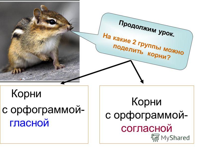 Корни с орфограммой- согласной Корни с орфограммой- гласной Продолжим урок. На какие 2 группы можно поделить корни?