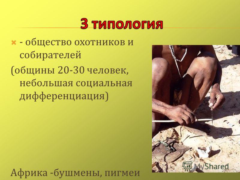 - общество охотников и собирателей ( общины 20-30 человек, небольшая социальная дифференциация ) Африка - бушмены, пигмеи