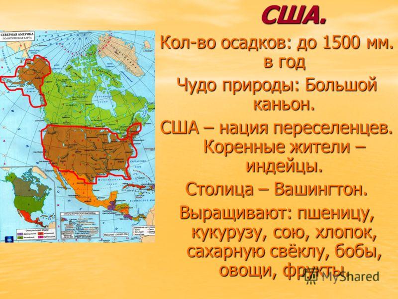 США. Кол-во осадков: до 1500 мм. в год Чудо природы: Большой каньон. США – нация переселенцев. Коренные жители – индейцы. Столица – Вашингтон. Выращивают: пшеницу, кукурузу, сою, хлопок, сахарную свёклу, бобы, овощи, фрукты.