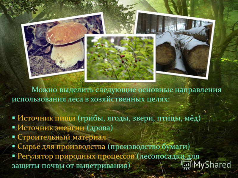 Можно выделить следующие основные направления использования леса в хозяйственных целях: Источник пищи (грибы, ягоды, звери, птицы, мёд) Источник энергии (дрова) Строительный материал Сырьё для производства (производство бумаги) Регулятор природных пр