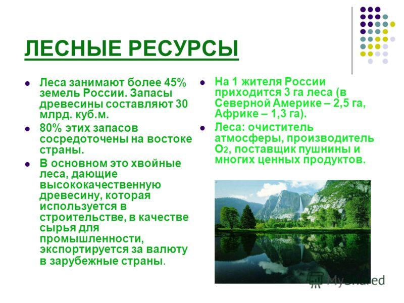 ЛЕСНЫЕ РЕСУРСЫ Леса занимают более 45% земель России. Запасы древесины составляют 30 млрд. куб.м. 80% этих запасов сосредоточены на востоке страны. В основном это хвойные леса, дающие высококачественную древесину, которая используется в строительстве