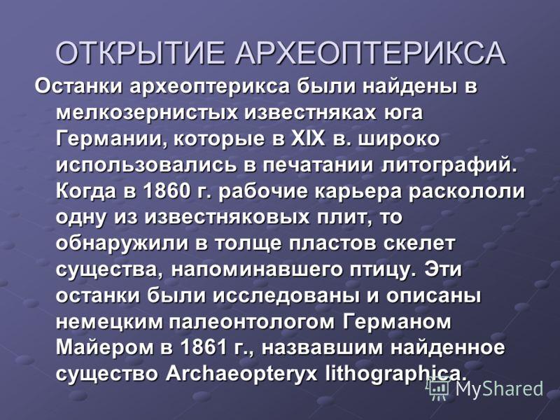 ОТКРЫТИЕ АРХЕОПТЕРИКСА Останки археоптерикса были найдены в мелкозернистых известняках юга Германии, которые в XIX в. широко использовались в печатании литографий. Когда в 1860 г. рабочие карьера раскололи одну из известняковых плит, то обнаружили в