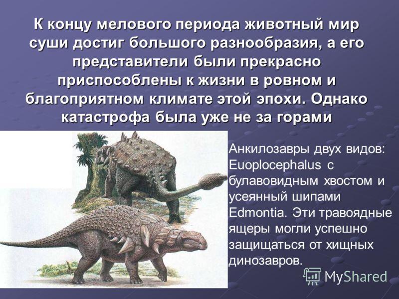 К концу мелового периода животный мир суши достиг большого разнообразия, а его представители были прекрасно приспособлены к жизни в ровном и благоприятном климате этой эпохи. Однако катастрофа была уже не за горами Анкилозавры двух видов: Euoplocepha