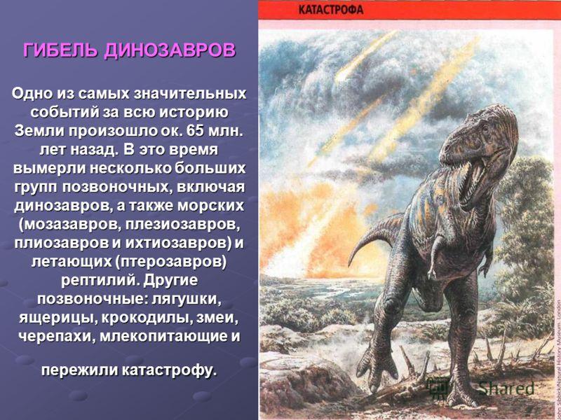 ГИБЕЛЬ ДИНОЗАВРОВ Одно из самых значительных событий за всю историю Земли произошло ок. 65 млн. лет назад. В это время вымерли несколько больших групп позвоночных, включая динозавров, а также морских (мозазавров, плезиозавров, плиозавров и ихтиозавро