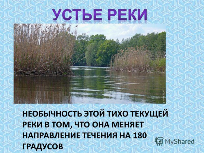 В реку впадает до 20 притоков и ручьев. Русло реки слабоизвилист ое. Склоны пологие.