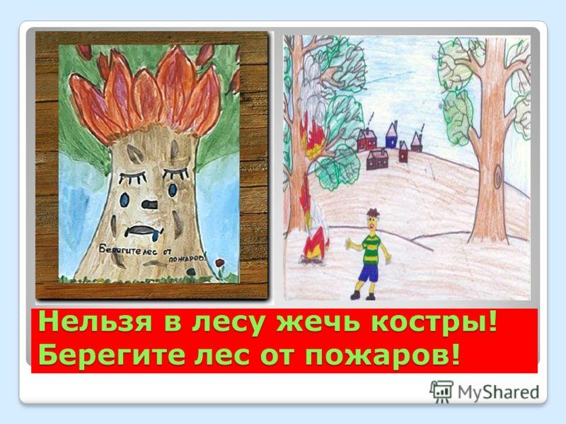 Нельзя в лесу жечь костры! Берегите лес от пожаров!