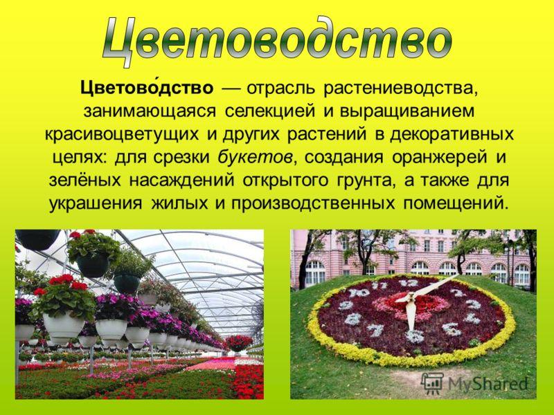 Цветово́дство отрасль растениеводства, занимающаяся селекцией и выращиванием красивоцветущих и других растений в декоративных целях: для срезки букетов, создания оранжерей и зелёных насаждений открытого грунта, а также для украшения жилых и производс
