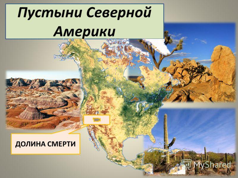 Пустыни Северной Америки ДОЛИНА СМЕРТИ