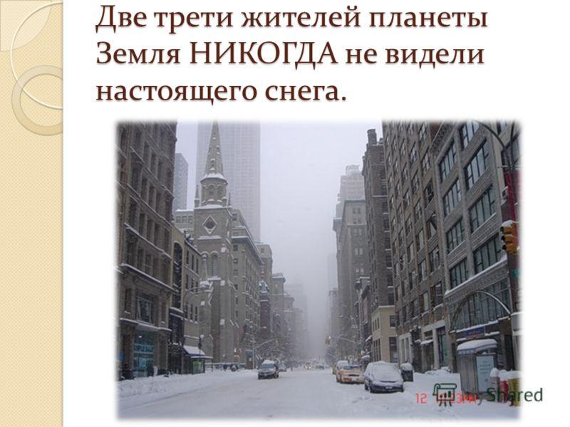 Две трети жителей планеты Земля НИКОГДА не видели настоящего снега.