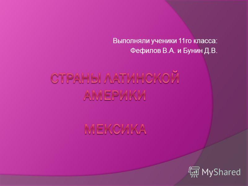 Выполняли ученики 11го класса: Фефилов В.А. и Бунин Д.В.