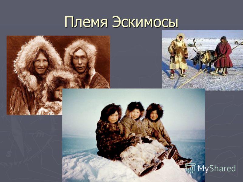 Племя Эскимосы