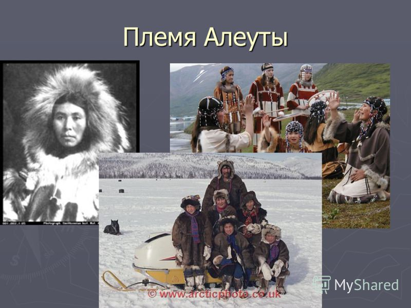 Племя Алеуты