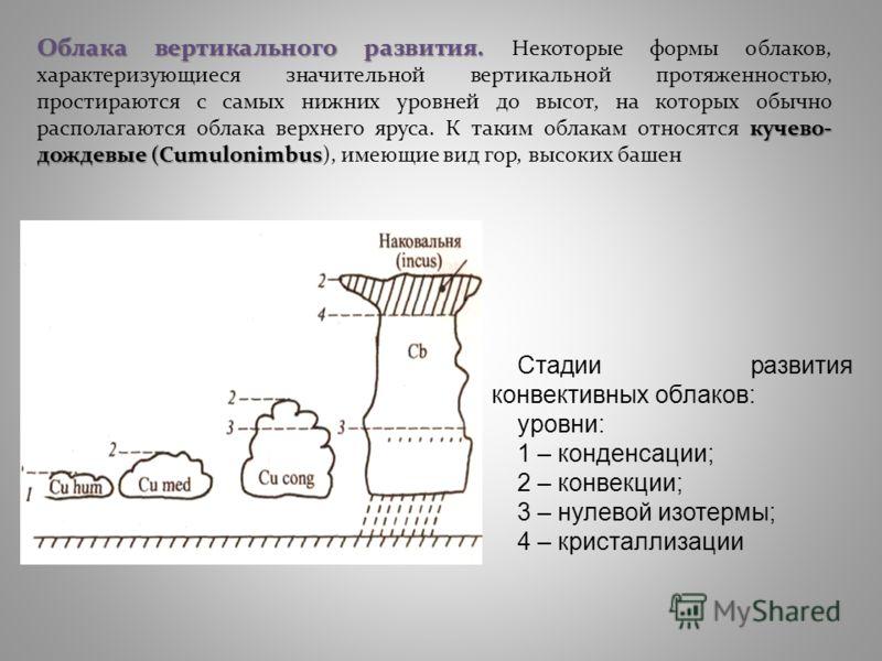Облака вертикального развития. кучево- дождевые (Cumulonimbus Облака вертикального развития. Некоторые формы облаков, характеризующиеся значительной вертикальной протяженностью, простираются с самых нижних уровней до высот, на которых обычно располаг