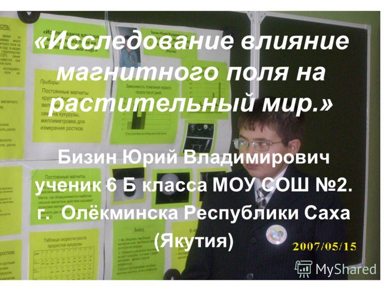 «Исследование влияние магнитного поля на растительный мир.» Бизин Юрий Владимирович ученик 6 Б класса МОУ СОШ 2. г. Олёкминска Республики Саха (Якутия)