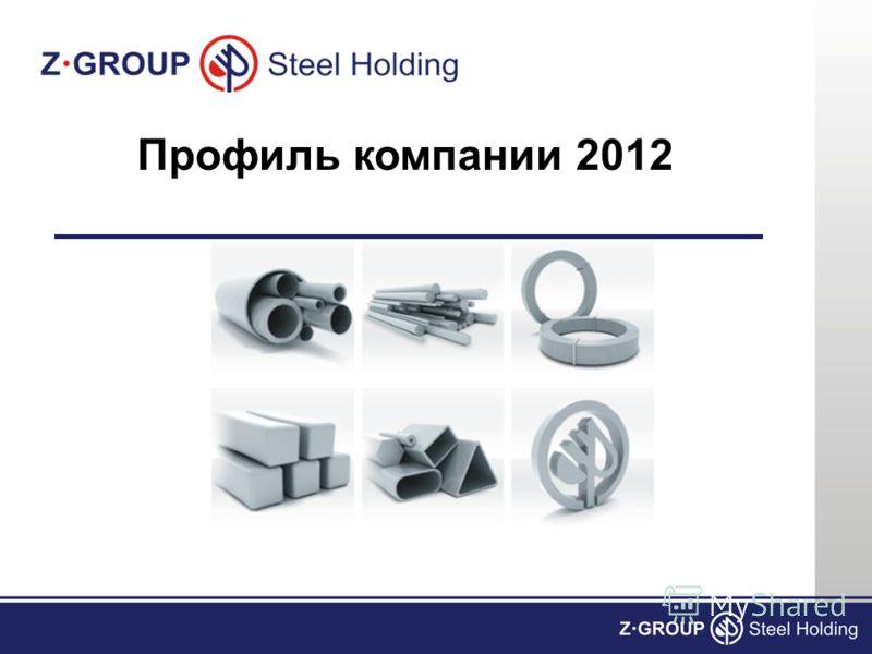 Профиль компании 2012
