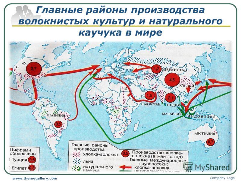 Главные районы производства волокнистых культур и натурального каучука в мире Company Logo www.themegallery.com