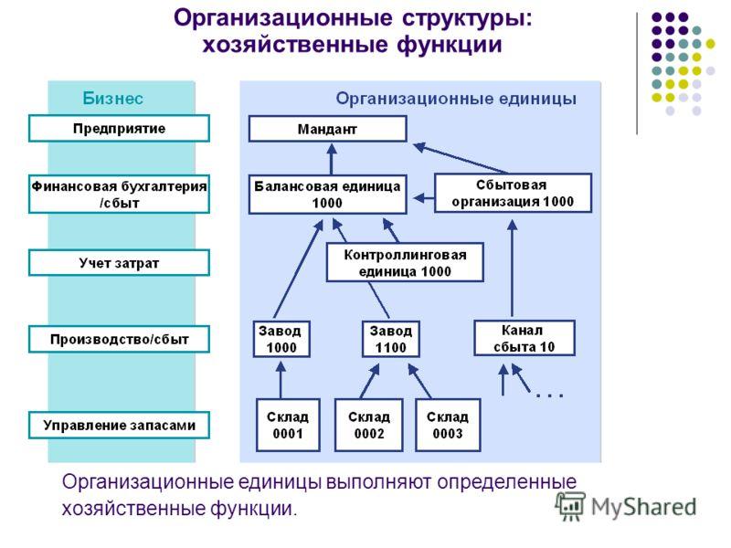 Организационные структуры: хозяйственные функции Организационные единицы выполняют определенные хозяйственные функции.