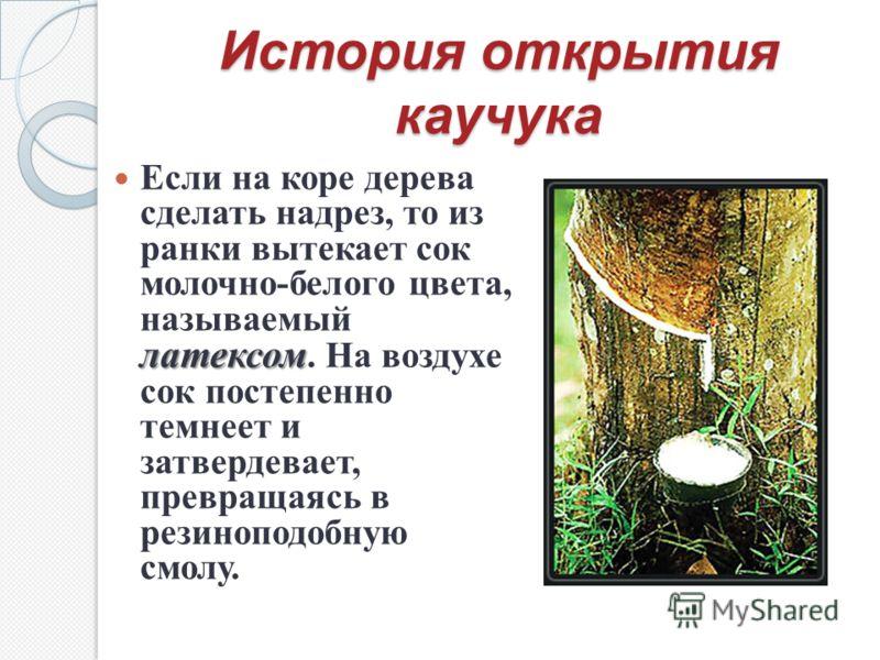 История открытия каучука латексом Если на коре дерева сделать надрез, то из ранки вытекает сок молочно-белого цвета, называемый латексом. На воздухе сок постепенно темнеет и затвердевает, превращаясь в резиноподобную смолу.