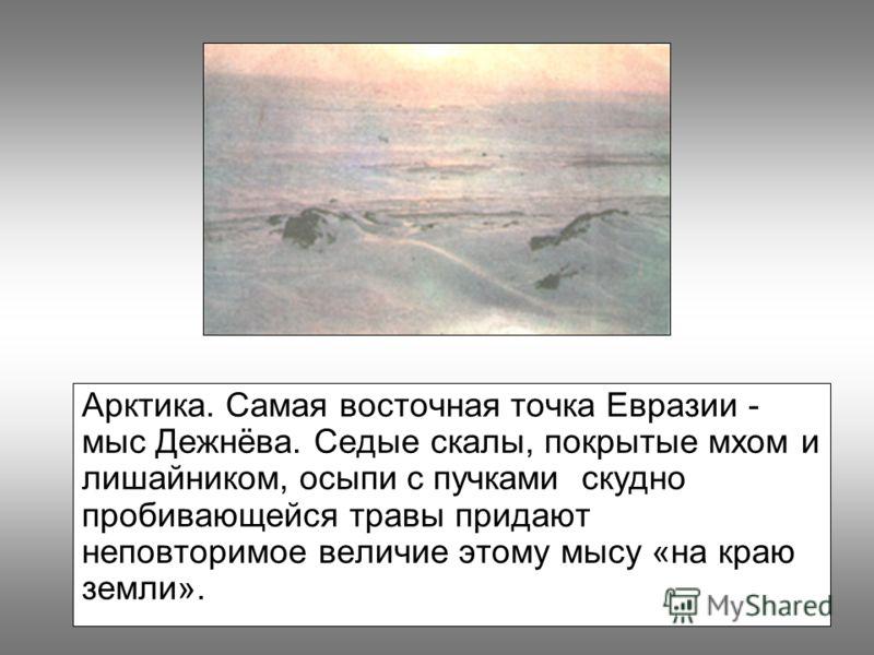 Арктика. Самая восточная точка Евразии - мыс Дежнёва. Седые скалы, покрытые мхом и лишайником, осыпи с пучками скудно пробивающейся травы придают неповторимое величие этому мысу «на краю земли».