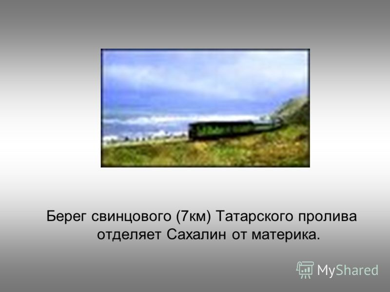 Берег свинцового (7км) Татарского пролива отделяет Сахалин от материка.