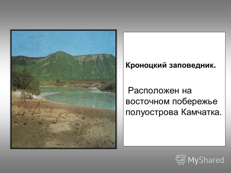 Кроноцкий заповедник. Расположен на восточном побережье полуострова Камчатка.