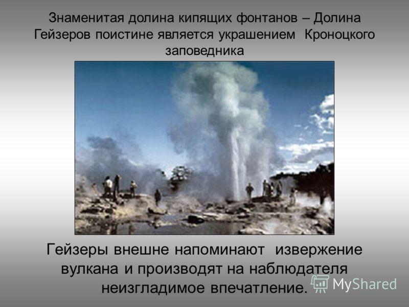 Гейзеры внешне напоминают извержение вулкана и производят на наблюдателя неизгладимое впечатление. Знаменитая долина кипящих фонтанов – Долина Гейзеров поистине является украшением Кроноцкого заповедника
