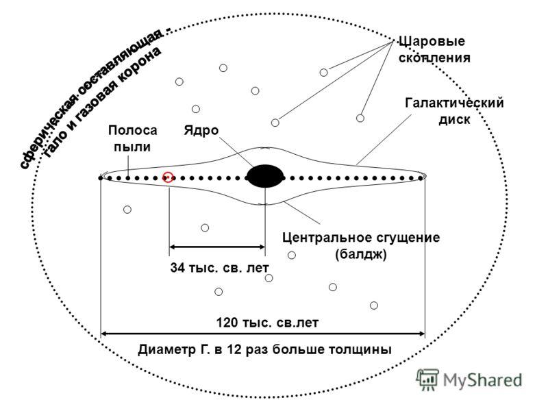 120 тыс. св.лет 34 тыс. св. лет Шаровые скопления Ядро Галактический диск Центральное сгущение (балдж) Полоса пыли Диаметр Г. в 12 раз больше толщины