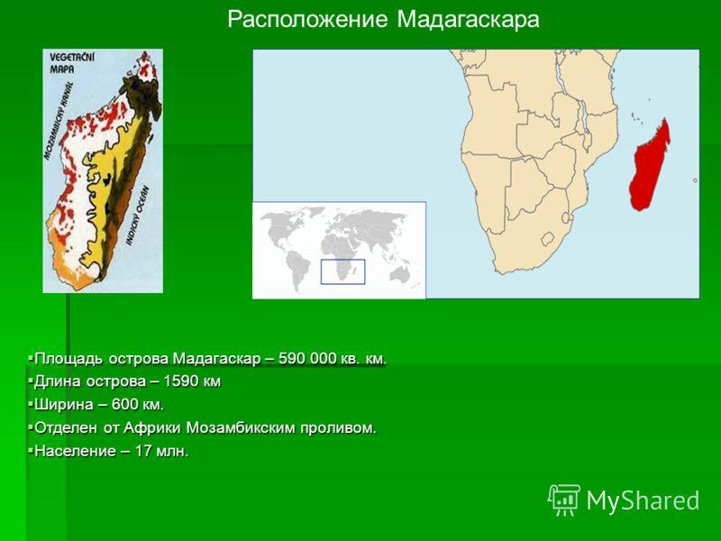 Расположение Мадагаскара Площадь острова Мадагаскар – 590 000 кв. км. Площадь острова Мадагаскар – 590 000 кв. км. Длина острова – 1590 км Длина острова – 1590 км Ширина – 600 км. Ширина – 600 км. Отделен от Африки Мозамбикским проливом. Отделен от А