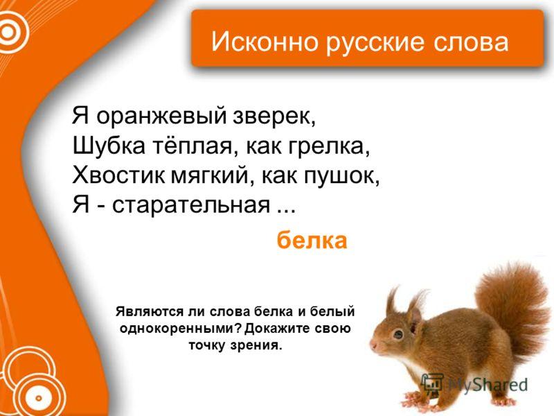Исконно русские слова Я оранжевый зверек, Шубка тёплая, как грелка, Хвостик мягкий, как пушок, Я - старательная... белка Являются ли слова белка и белый однокоренными? Докажите свою точку зрения.