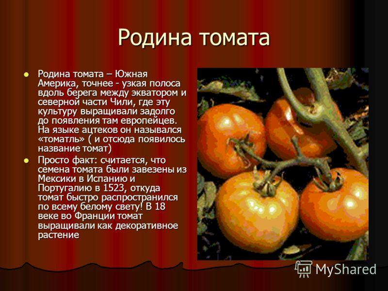 Что такое томат? Томат - про него можно сказать множество слов он вкусный, полезный, всегда любимый. Томат - про него можно сказать множество слов он вкусный, полезный, всегда любимый. Но он не всегда растёт!!! Но он не всегда растёт!!!