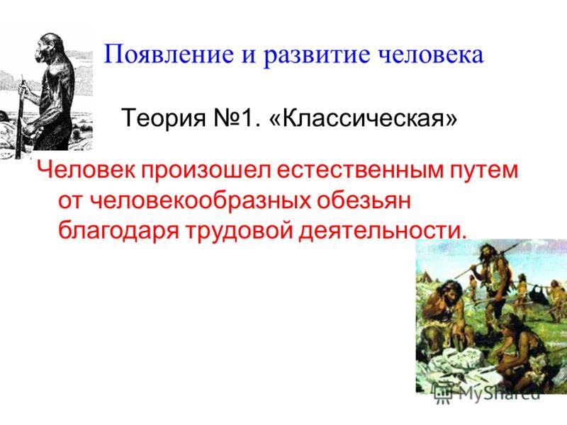 Появление и развитие человека Теория 1. «Классическая» Человек произошел естественным путем от человекообразных обезьян благодаря трудовой деятельности.
