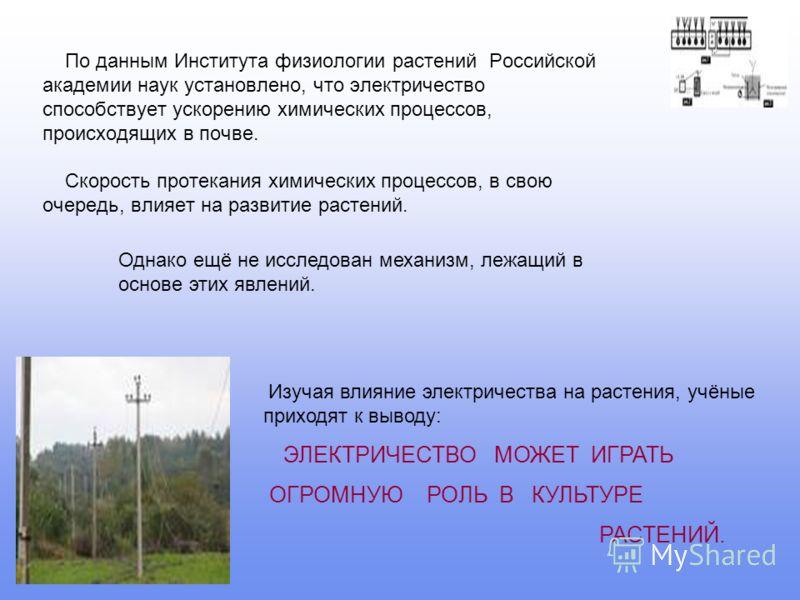 По данным Института физиологии растений Российской академии наук установлено, что электричество способствует ускорению химических процессов, происходящих в почве. Скорость протекания химических процессов, в свою очередь, влияет на развитие растений.