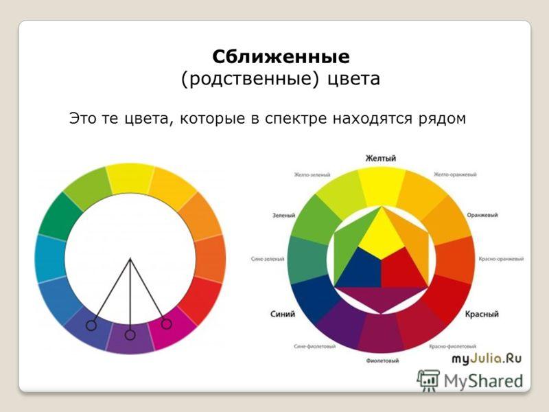 Сближенные (родственные) цвета Это те цвета, которые в спектре находятся рядом