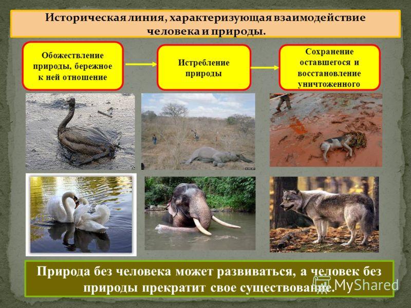 Обожествление природы, бережное к ней отношение Истребление природы Сохранение оставшегося и восстановление уничтоженного Историческая линия, характеризующая взаимодействие человека и природы. Природа без человека может развиваться, а человек без при