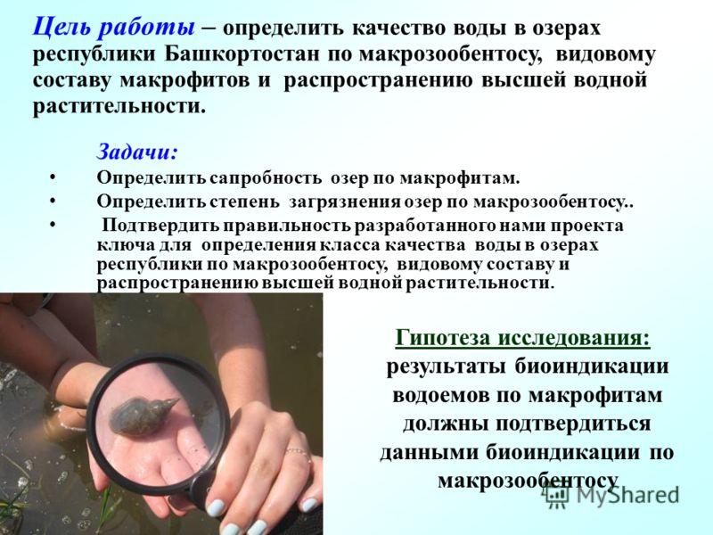 Цель работы – определить качество воды в озерах республики Башкортостан по макрозообентосу, видовому составу макрофитов и распространению высшей водной растительности. Задачи: Определить сапробность озер по макрофитам. Определить степень загрязнения