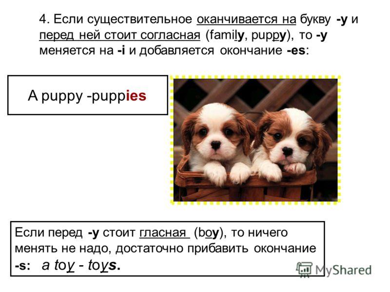 4. Если существительное оканчивается на букву -y и перед ней стоит согласная (family, puppy), то -y меняется на -i и добавляется окончание -es: Если перед -y стоит гласная (boy), то ничего менять не надо, достаточно прибавить окончание -s: a toy - to