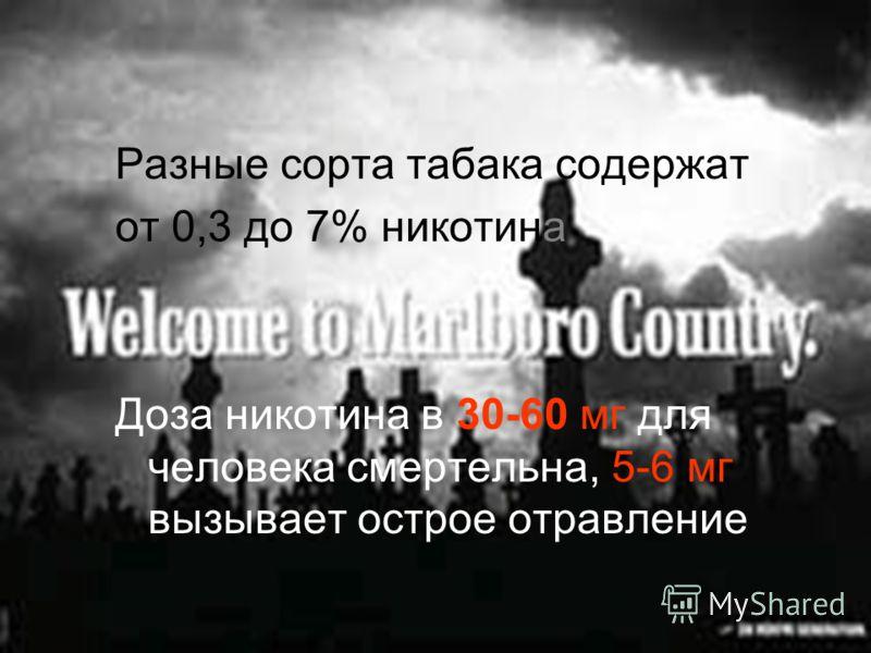 Разные сорта табака содержат от 0,3 до 7% никотина Доза никотина в 30-60 мг для человека смертельна, 5-6 мг вызывает острое отравление