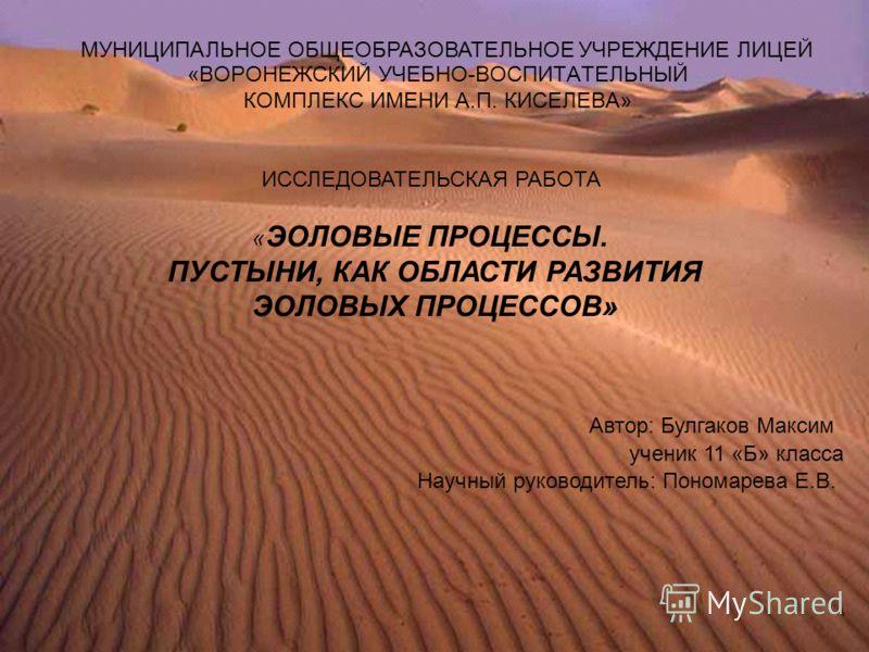 «ВОРОНЕЖСКИЙ УЧЕБНО-ВОСПИТАТЕЛЬНЫЙ КОМПЛЕКС ИМЕНИ А.П. КИСЕЛЕВА» МУНИЦИПАЛЬНОЕ ОБЩЕОБРАЗОВАТЕЛЬНОЕ УЧРЕЖДЕНИЕ ЛИЦЕЙ ИССЛЕДОВАТЕЛЬСКАЯ РАБОТА « ЭОЛОВЫЕ ПРОЦЕССЫ. ПУСТЫНИ, КАК ОБЛАСТИ РАЗВИТИЯ ЭОЛОВЫХ ПРОЦЕССОВ» ученик 11 «Б» класса Автор: Булгаков Мак