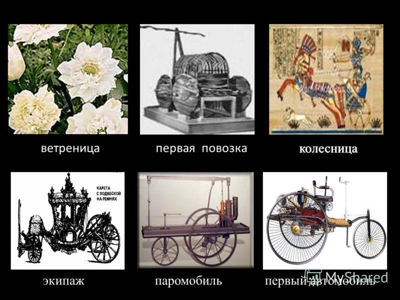 ветреница колесница экипаж колесница паромобиль первый автомобиль первая повозка